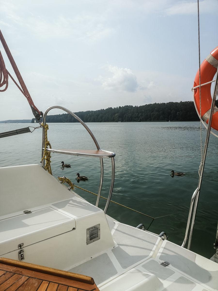 na pierwszym planie fragment pokładu łódki, w tle woda i stadko kaczek